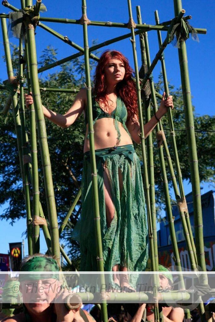 Festivals return to the North Coast