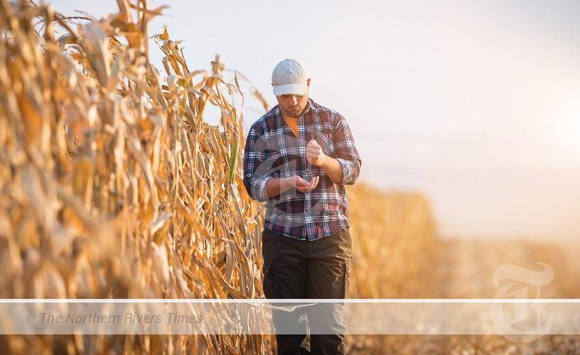 NSW CALLS FOR EAST COAST AGRICULTURE LABOUR TASK FORCE TO BE ESTABLISHED